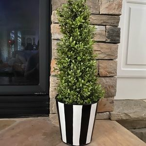 Boxwood 2 Feet Decorations (Set)